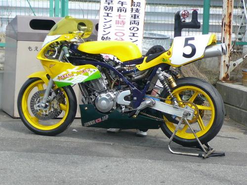 P1030559.JPG